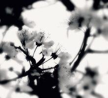 tranquility...two~ by Brandi Burdick
