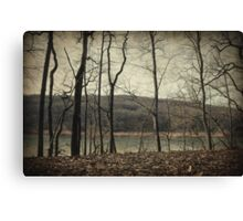 Tales from the woods Canvas Print