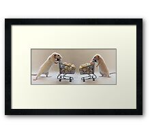 Do you think we have enough eggs? Framed Print