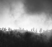 Mist Covered Mountains by Maggy Morrissey