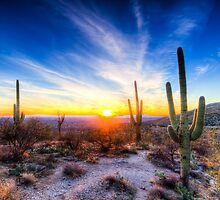Tucson Sunset by Ray Chiarello