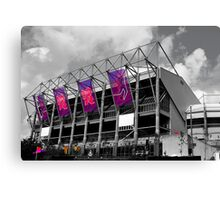 Olympic Toon Canvas Print