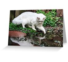 Maya Sees Her Reflection! Greeting Card