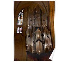 Hanging Organ Poster