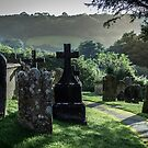 Dead in Devon. by neal73