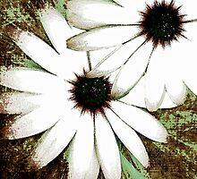 grungy daisys by gruntpig