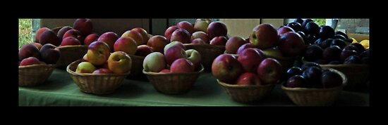Apples and Plums by Deborah McGrath