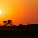 Bright Orange Sunset by lindsycarranza