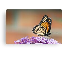 Resting on Flowers Canvas Print