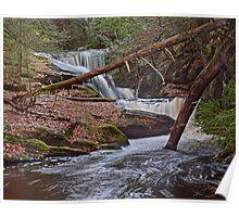 Enders Waterfall Poster
