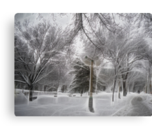 Snow-covered Path in a Scenic Park Canvas Print