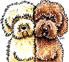 Cream & Chocolate Labradoodles Photographic Print