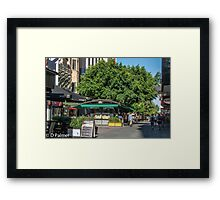 Rundle Mall - inside the mall Framed Print