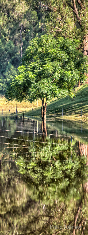Mirror - St Albans NSW (Vertical Crop) - The HDR Experience by Philip Johnson