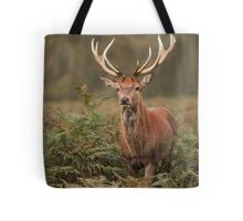 Majestic Red Stag Tote Bag