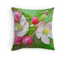 Apple Blossoms -  Melody in Pink and White Throw Pillow