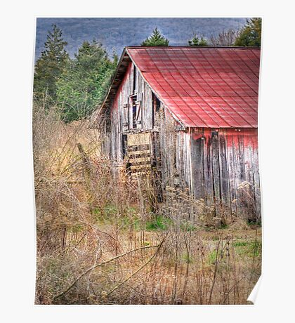 Beauty in Old Barns Poster