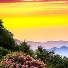 MOUNTAIN LAUREL SUNDOWN by Randy & Kay Branham