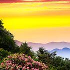 MOUNTAIN LAUREL SUNDOWN by Randy & Kay Branham
