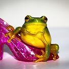 Frog on Pink Slipper by Donna Rondeau