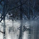 Morning Mist Mystery by unstoppable