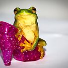 Frog on Pink Slipper 2 by Donna Rondeau