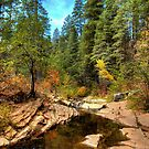 Autumn By The Stream by K D Graves Photography