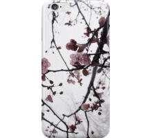 Cherry Blossom in the Fog iPhone Case/Skin