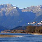 River wander by Jean Poulton