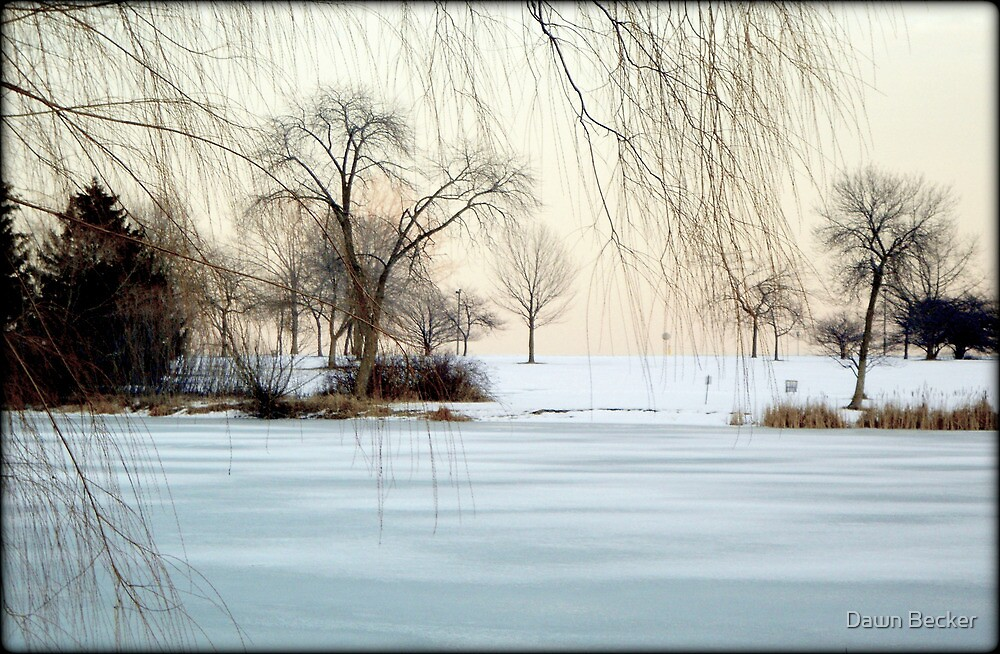 Winter © by Dawn M. Becker