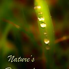 Nature&#x27;s Diamonds surreal by Elisabeth Dubois