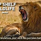 """Top Shelf Wildlife"" Featuring banner by Konstantinos Arvanitopoulos"