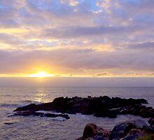 Dawn at Yorkeys Knob by Kathie Nichols