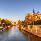 Notre Dame - Paris by Robyn Carter