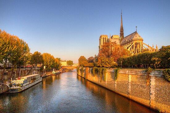 Notre Dame - Paris by Robyn Carter