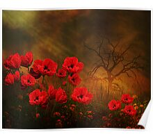 For the Love of Poppies Poster