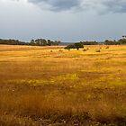Stormy Landscape by pennyswork