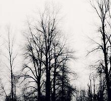 bleakness~ by Brandi Burdick