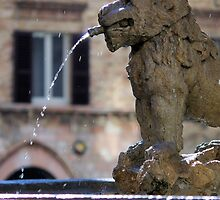 Lion Fountain by Francis Drake