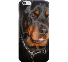 Mature Male Rottweiler Portrait iPhone Case/Skin