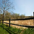 Audubon Fence by Clarkartusa