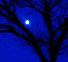 la luna by ventofreddo