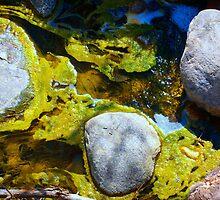 Goo Rocks by Squidcake
