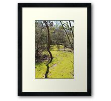 The Meadow Framed Print