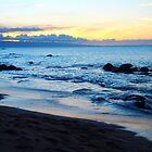 Mauii Beach by Squidcake