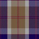 00762 Bannockbane Navy Fashion Tartan Fabric Print Iphone Case by Detnecs2013