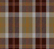 00763 Bannockbane Orange Stripe Fashion Tartan Fabric Print Iphone Case by Detnecs2013