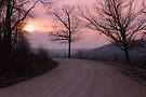 Mauve Sunset by NatureGreeting Cards ©ccwri