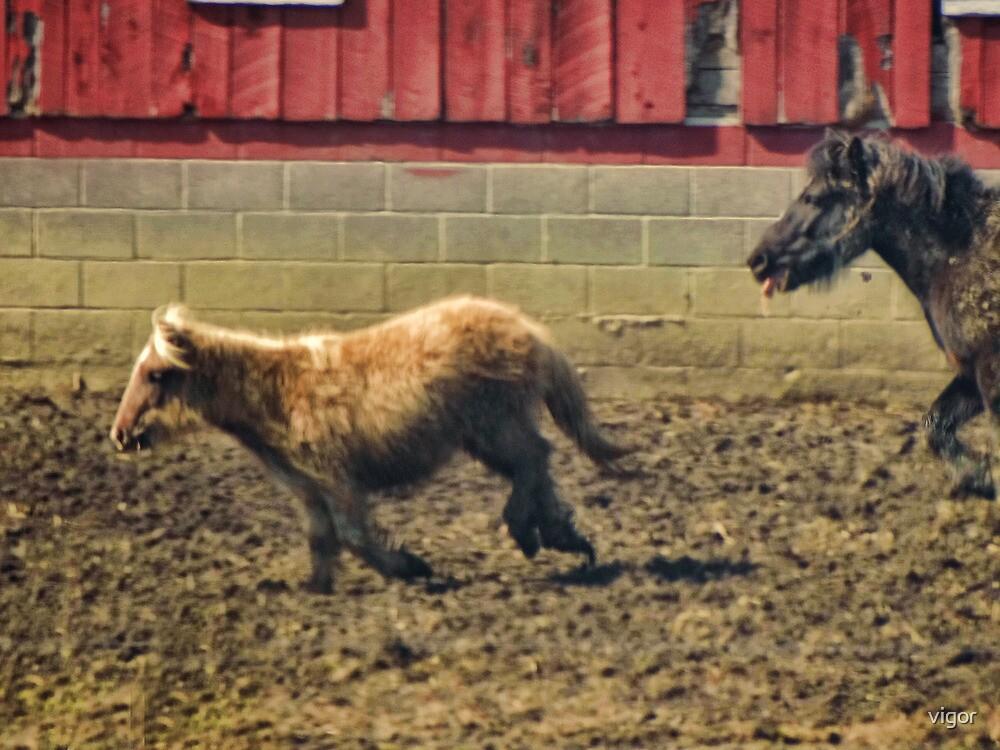 Just horsin' around by vigor