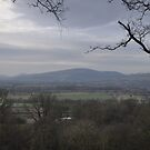 Shropshire The Mountain In The Distance  by Robbie Patterson